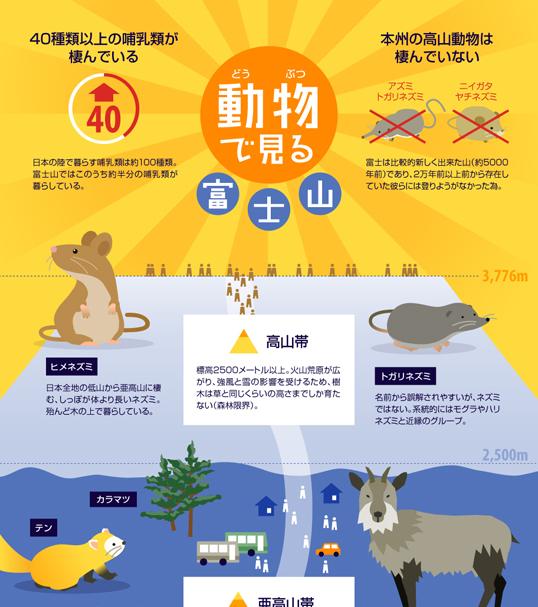 インフォグラフィックス:動物でみる富士山